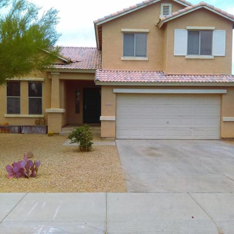 12622 W Merrell Street, Avondale, AZ 85392 (MLS #5655695) :: Kortright Group - West USA Realty