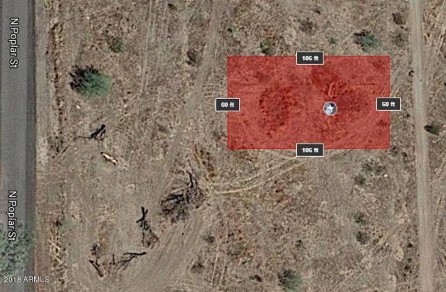 319XX S Poplar Street, Wittmann, AZ 85361 (MLS #5657267) :: Brett Tanner Home Selling Team