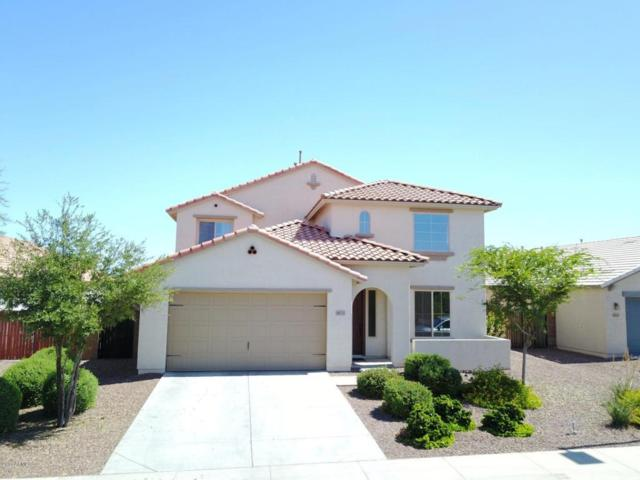 3675 S 185TH Drive, Goodyear, AZ 85338 (MLS #5657350) :: Kortright Group - West USA Realty
