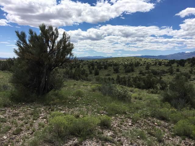 000 Harris Valley Ranch Road, Seligman, AZ 86337 (MLS #5658537) :: REMAX Professionals