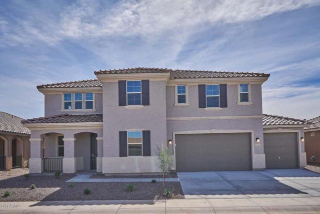 40631 W Walker Way, Maricopa, AZ 85138 (MLS #5658844) :: Occasio Realty