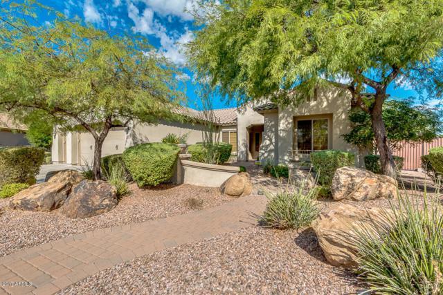 5526 W Yearling Road, Phoenix, AZ 85083 (MLS #5660800) :: The Laughton Team