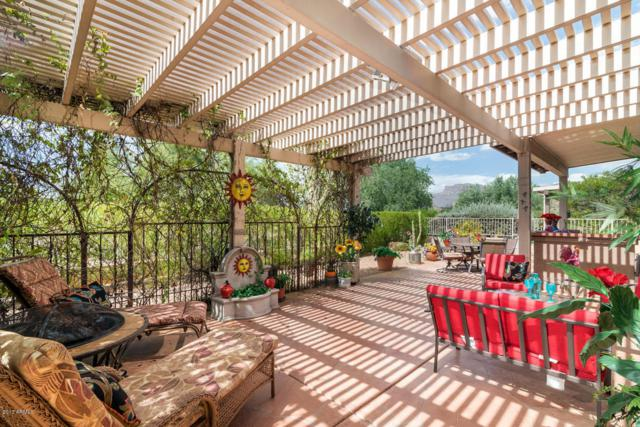 6072 S Cassia Drive, Gold Canyon, AZ 85118 (MLS #5661196) :: The Pete Dijkstra Team