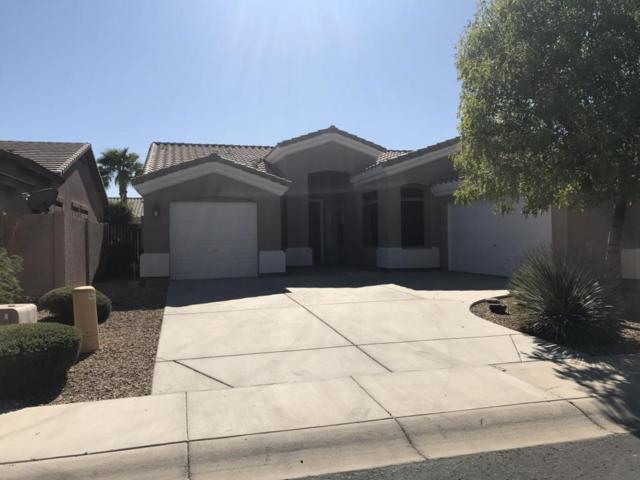 16656 N 172ND Lane, Surprise, AZ 85388 (MLS #5662043) :: Lifestyle Partners Team