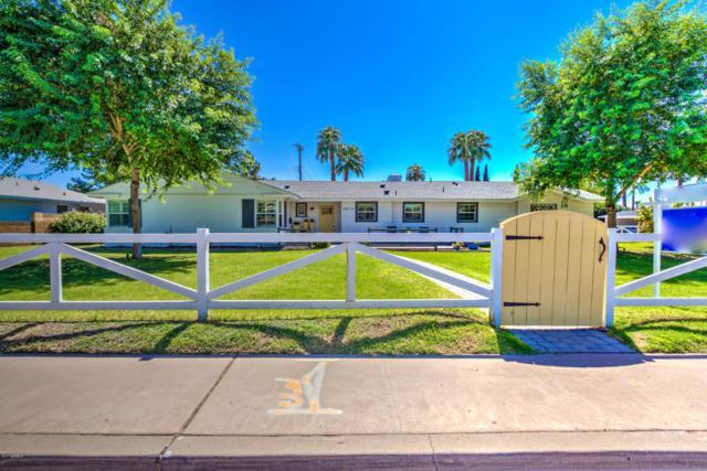 4815 E Osborn Road, Phoenix, AZ 85018 (MLS #5662212) :: Lux Home Group at  Keller Williams Realty Phoenix