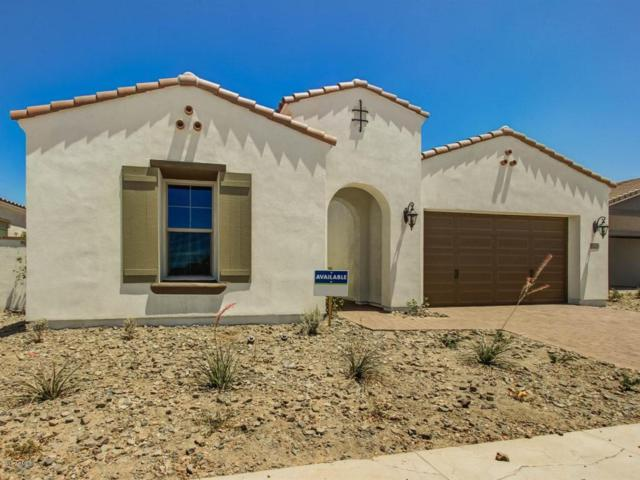 5221 S Excimer Drive, Mesa, AZ 85212 (MLS #5662296) :: The Wehner Group