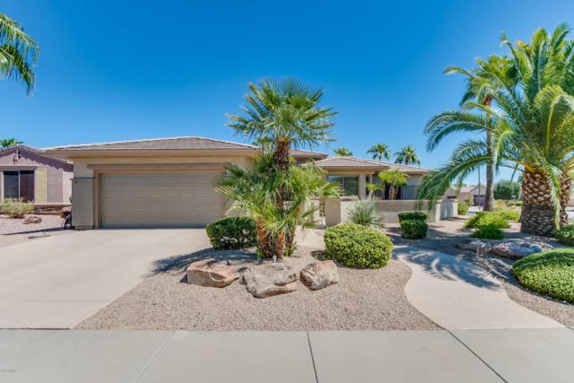 18703 N Poppy Court, Surprise, AZ 85387 (MLS #5662483) :: Desert Home Premier