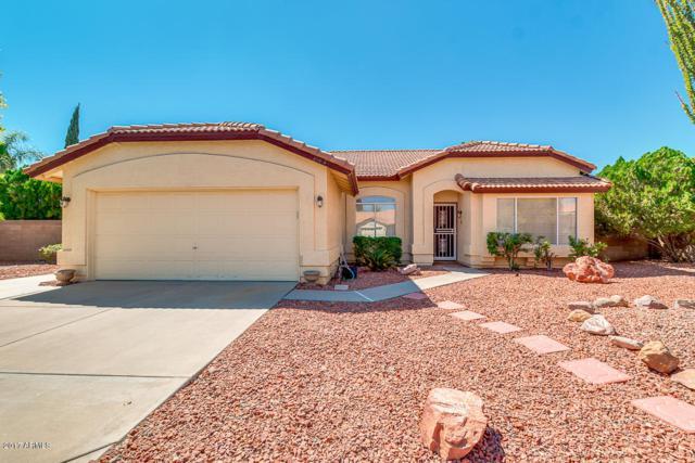 20610 N 110TH Avenue, Sun City, AZ 85373 (MLS #5662993) :: Desert Home Premier