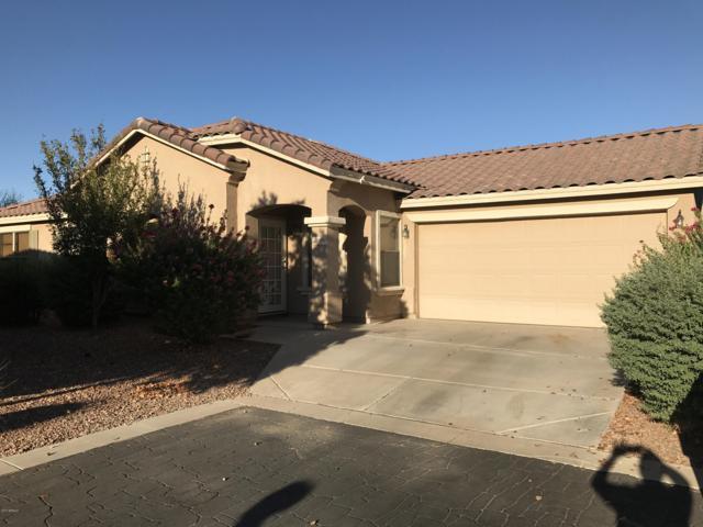 16916 W Rimrock Street, Surprise, AZ 85388 (MLS #5663431) :: RE/MAX Excalibur