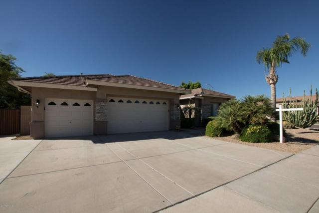 8107 W Carlota Lane, Peoria, AZ 85383 (MLS #5663713) :: The Laughton Team