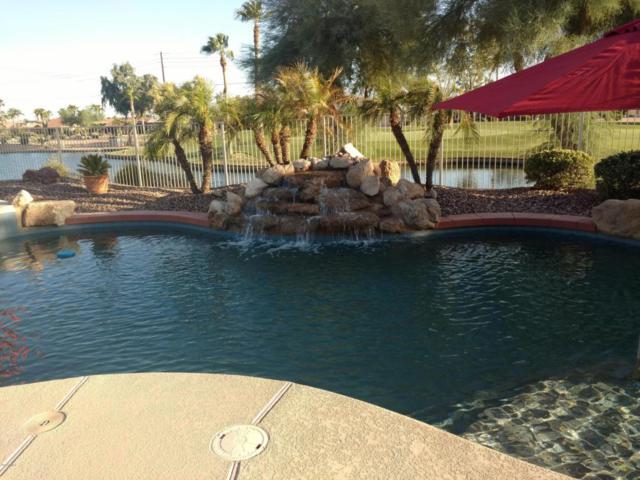 15901 W Merrell Street, Goodyear, AZ 85395 (MLS #5664145) :: Devor Real Estate Associates