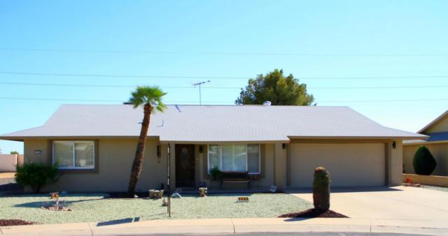 9305 W Wild Horse Court, Sun City, AZ 85373 (MLS #5664566) :: The Worth Group