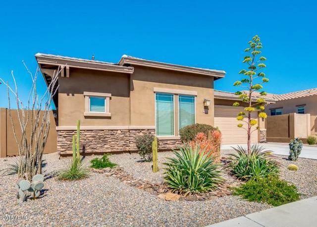 18232 W Sequoia Drive, Goodyear, AZ 85338 (MLS #5665640) :: Occasio Realty