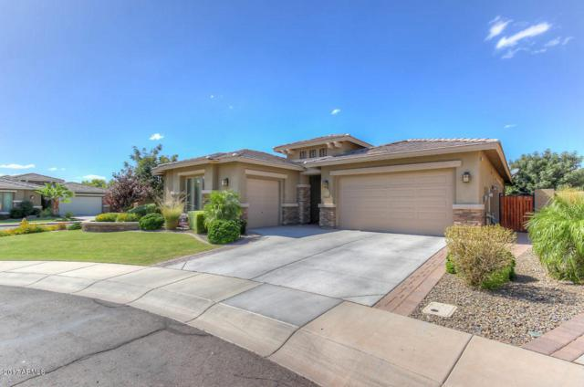 6703 S Jacqueline Way, Gilbert, AZ 85298 (MLS #5666801) :: The Everest Team at My Home Group