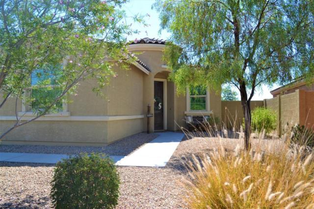 12768 S 184TH Avenue, Goodyear, AZ 85338 (MLS #5667125) :: Kortright Group - West USA Realty