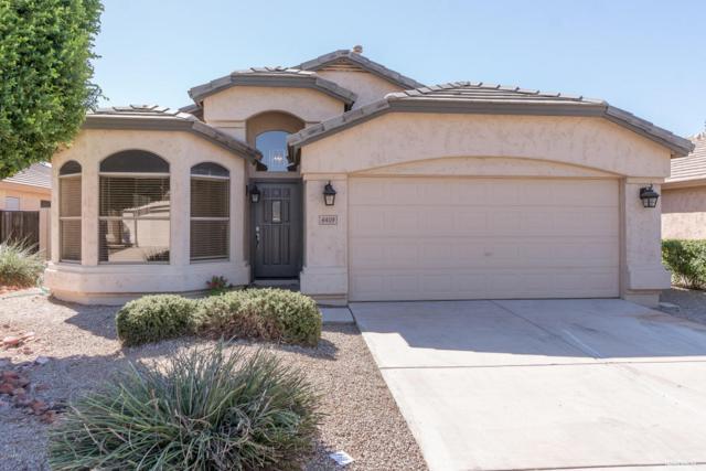 6409 W Wahalla Lane, Glendale, AZ 85308 (MLS #5667758) :: Rodney Barnes Real Estate
