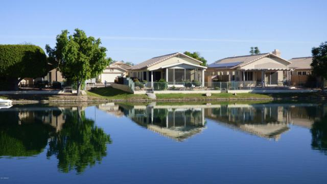10533 W Runion Drive, Peoria, AZ 85382 (MLS #5668980) :: Desert Home Premier