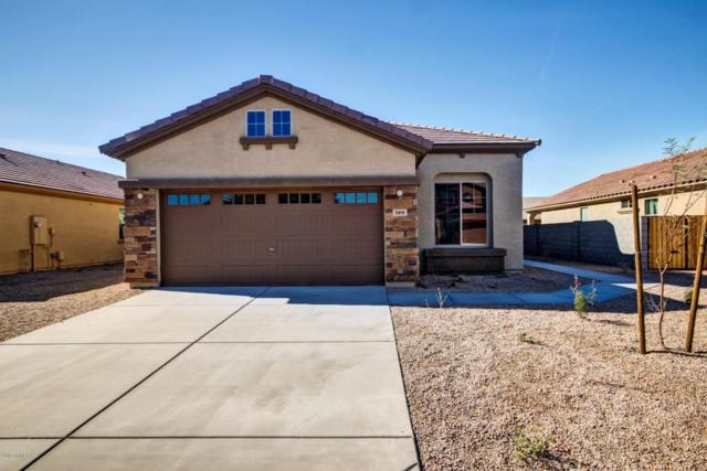 3418 S 121ST Drive, Tolleson, AZ 85353 (MLS #5669058) :: The Everest Team at My Home Group