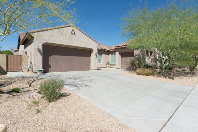 27542 N 89TH Drive, Peoria, AZ 85383 (MLS #5670978) :: The Laughton Team