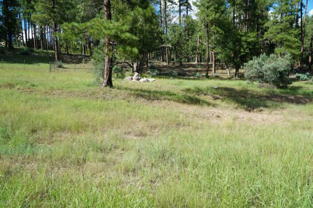 184 N Wild Cat Circle, Christopher Creek, AZ 85541 (MLS #5671573) :: Conway Real Estate