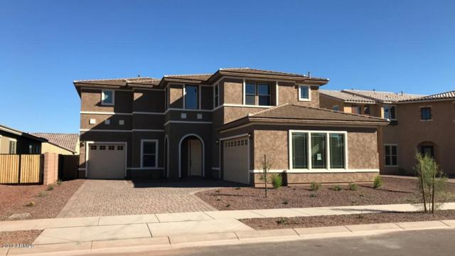 20252 E Quintero Road, Queen Creek, AZ 85142 (MLS #5675121) :: The Bill and Cindy Flowers Team