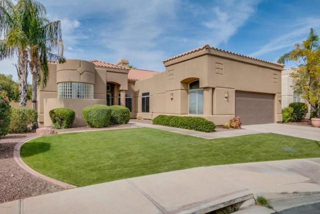 9048 N 115TH Place, Scottsdale, AZ 85259 (MLS #5675406) :: Occasio Realty