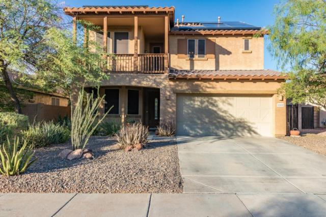 12102 W Dove Wing Way, Peoria, AZ 85383 (MLS #5675429) :: Kortright Group - West USA Realty