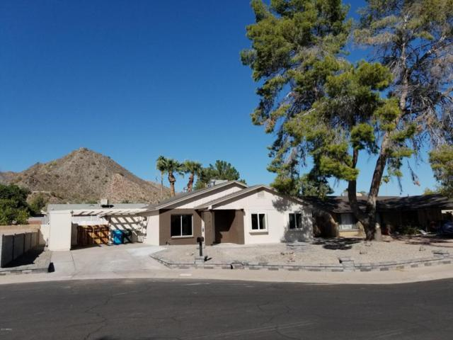 2414 E Aster Drive, Phoenix, AZ 85032 (MLS #5675524) :: The Everest Team at My Home Group