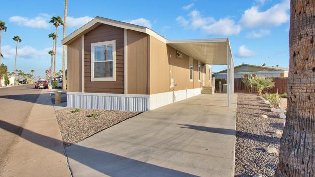 2701 E Allred Avenue #141, Mesa, AZ 85204 (MLS #5675972) :: My Home Group