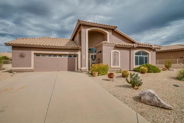 8732 E Aloe Drive, Gold Canyon, AZ 85118 (MLS #5676160) :: Revelation Real Estate