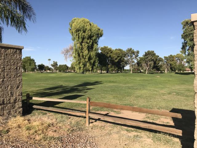 14527 W Hidden Terrace Loop, Litchfield Park, AZ 85340 (MLS #5676473) :: The W Group