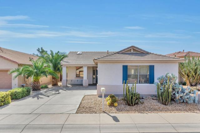 18043 W Udall Drive, Surprise, AZ 85374 (MLS #5676546) :: Occasio Realty