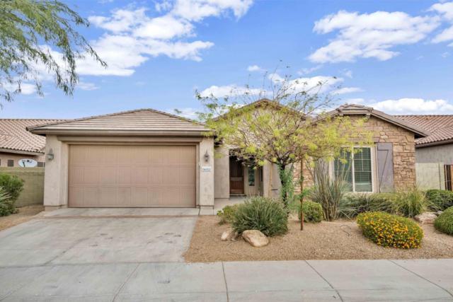 9032 W Molly Lane, Peoria, AZ 85383 (MLS #5677365) :: The Laughton Team