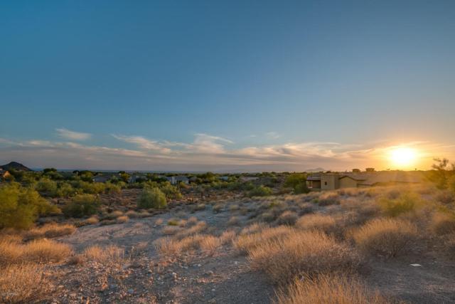 13096 E Cibola Road, Scottsdale, AZ 85259 (MLS #5678262) :: Team Wilson Real Estate