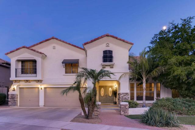34205 N 23RD Drive, Phoenix, AZ 85085 (MLS #5678751) :: Occasio Realty