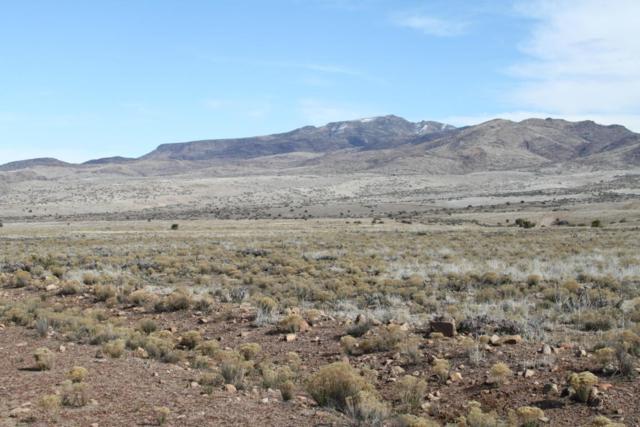 Lot 144 Great Western Road, Wikieup, AZ 85360 (MLS #5678878) :: Yost Realty Group at RE/MAX Casa Grande
