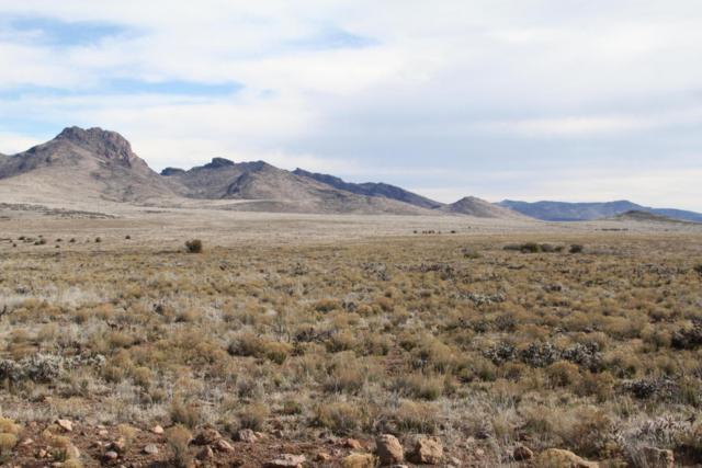 Lot 148 Great Western Road, Wikieup, AZ 85360 (MLS #5678884) :: Yost Realty Group at RE/MAX Casa Grande