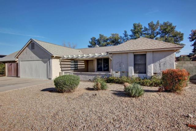 13037 N 56TH Avenue, Glendale, AZ 85304 (MLS #5680359) :: Kortright Group - West USA Realty