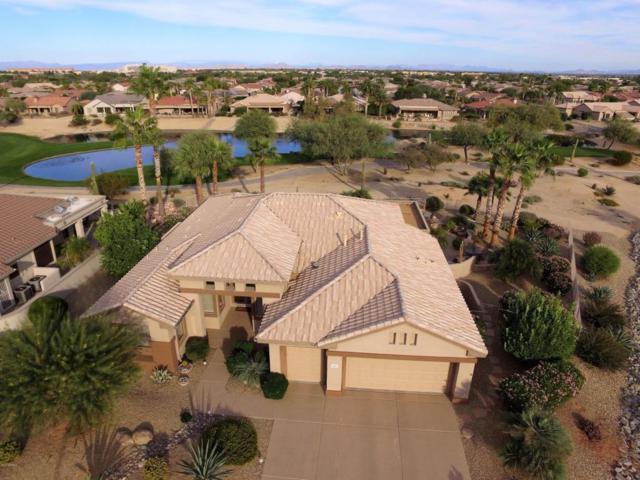 18401 N Hibiscus Lane, Surprise, AZ 85374 (MLS #5681980) :: Yost Realty Group at RE/MAX Casa Grande