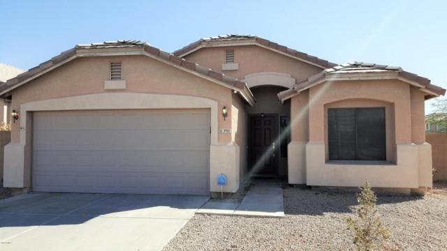 3901 N 125TH Lane, Avondale, AZ 85392 (MLS #5684984) :: Power Realty Group Model Home Center