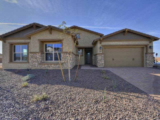 11861 W Ashby Drive, Peoria, AZ 85383 (MLS #5685051) :: My Home Group