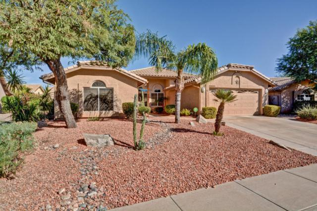 18837 N 89TH Lane, Peoria, AZ 85382 (MLS #5685548) :: Desert Home Premier