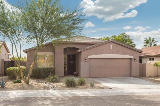 1815 W Nighthawk Way, Phoenix, AZ 85045 (MLS #5686059) :: Sibbach Team - Realty One Group