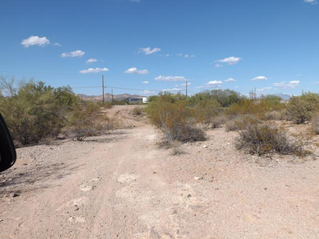 0 N Hwy 88, Apache Junction, AZ 85119 (MLS #5686561) :: The Kenny Klaus Team