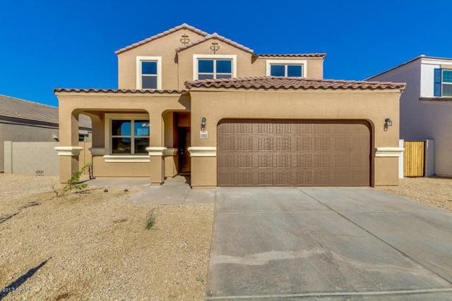 17033 N Rosemont Street, Maricopa, AZ 85138 (MLS #5687018) :: Yost Realty Group at RE/MAX Casa Grande
