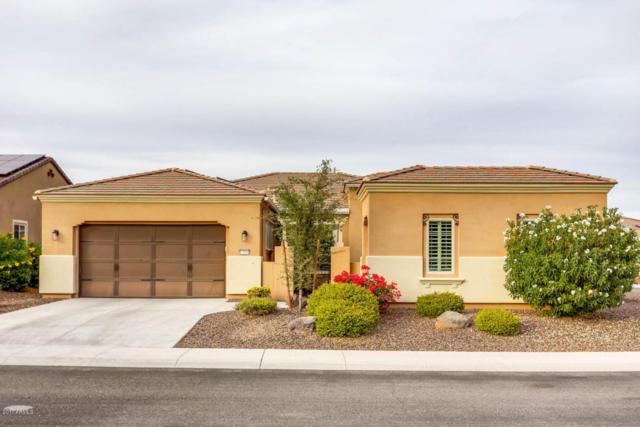 12916 W Auburn Drive, Peoria, AZ 85383 (MLS #5687366) :: The Laughton Team