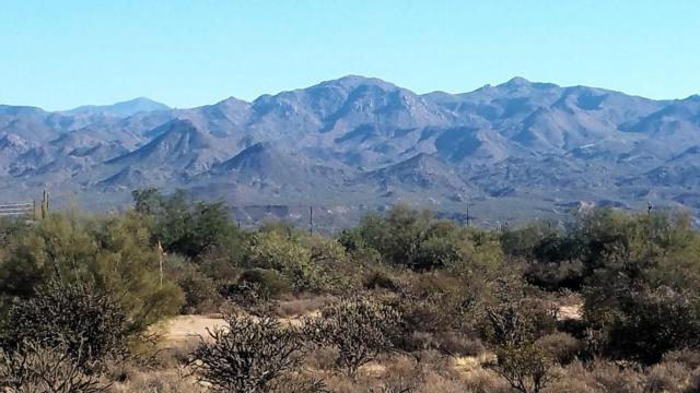 27532 N 174TH Street, Rio Verde, AZ 85263 (MLS #5687430) :: Desert Home Premier