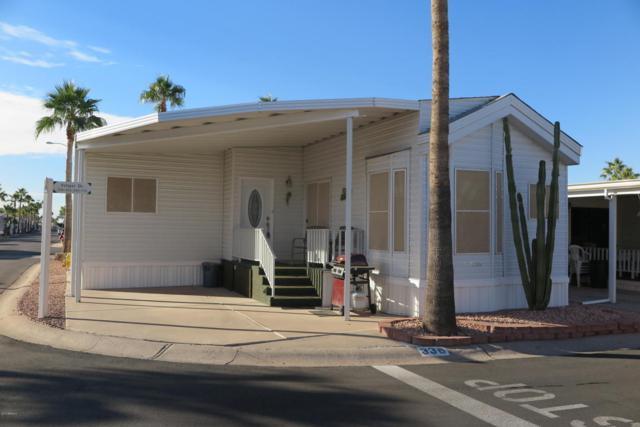 3710 S Goldfield Road #336, Apache Junction, AZ 85119 (MLS #5687470) :: Brett Tanner Home Selling Team