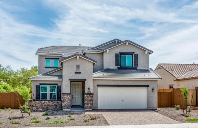 20219 N 260TH Drive, Buckeye, AZ 85396 (MLS #5687808) :: Santizo Realty Group