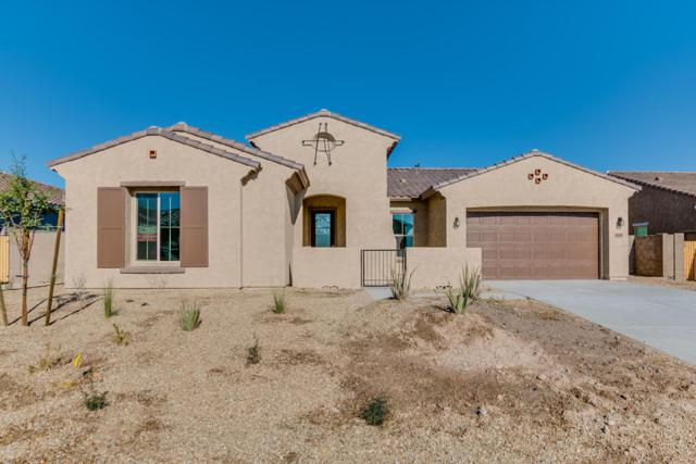18368 W Thunderhill Place, Goodyear, AZ 85338 (MLS #5688364) :: Occasio Realty